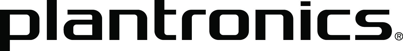 PLT_logo_PMS294_5w